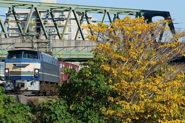 Photos: EF66 27【1083レ】