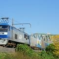 Photos: 1055レ【EF210-15牽引】