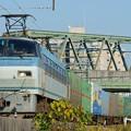 Photos: 1055レ【EF66 130牽引】