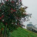 Photos: 配1392レ【EF66 132】