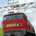 Photos: 3099レ【EF510-23牽引】
