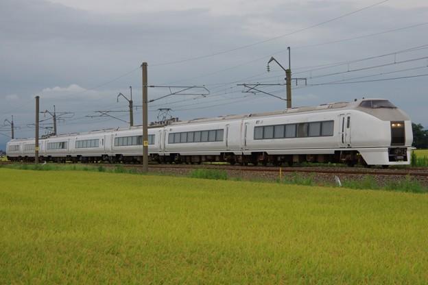 651系K105編成 お召し列車予備