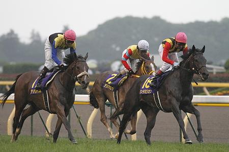 2010 優駿牝馬