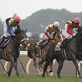 写真: 2010 優駿牝馬