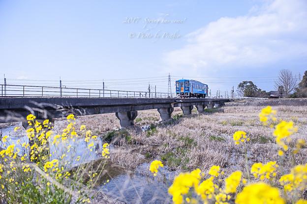 2017 甘木鉄道