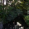写真: 帰りの松中橋