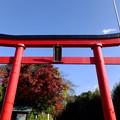 白笹神社にお参り