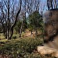 Photos: 小沢城址 2
