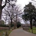 武蔵国分寺公園へ