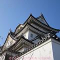 Photos: お城~♪