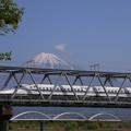 Photos: 160426 01 富士川河川敷の新幹線鉄橋から