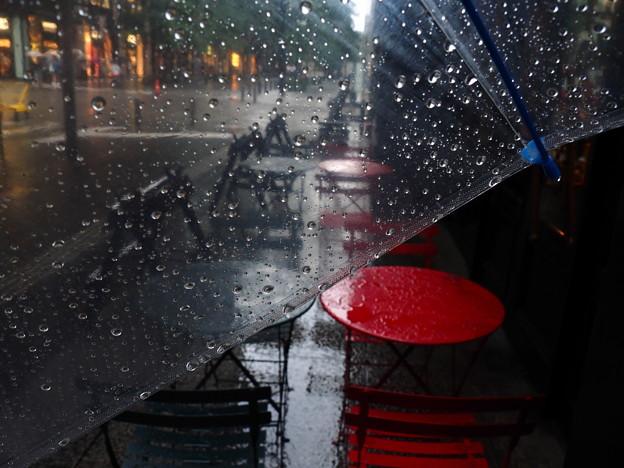 Photos: 雨のカフェテラス♪