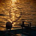 写真: 夕陽をキャッチ♪
