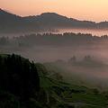 写真: 早暁の雲海