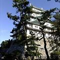 写真: 名古屋城07