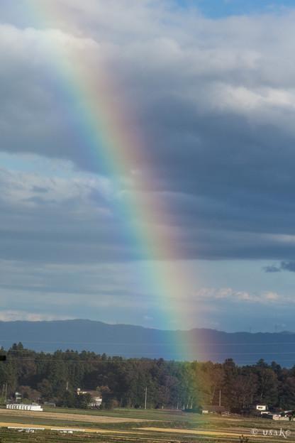 虹を見た日は