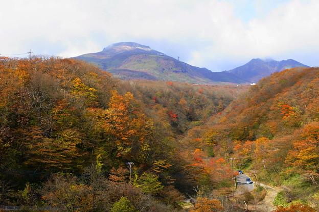 茶臼岳と紅葉