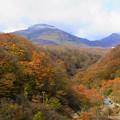 写真: 茶臼岳と紅葉