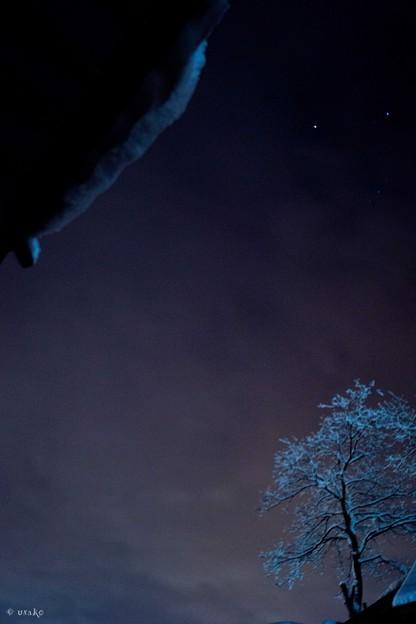 雪明りの夜