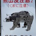 写真: 足利市山間部でもクマにご注意を!!