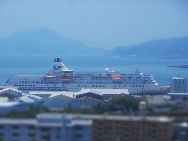 全長183mのパシフィック ビーナス号が寄港。