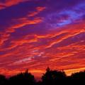 写真: 時々刻々の 朝焼けの空