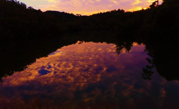 Photos: 池の主・錦鯉のいる山頂 ヤツガ池の秋 夕景 in 鳴滝山(標高408m)