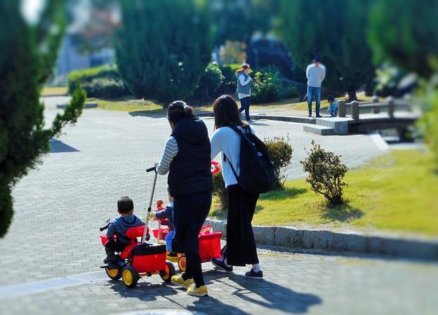 ママ友たちの散歩道