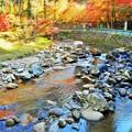 深山幽谷 仏通寺川の紅葉とせせらぎ