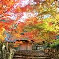 Photos: 紅葉アーチの永徳院 in 大本山佛通寺