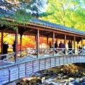鞘橋(巨蟒橋)の燃える秋 in 大本山仏通寺