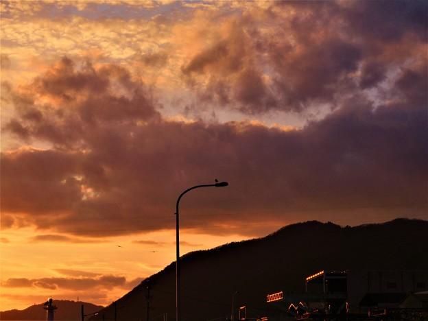 大晦日の港に カモメのいる夕景