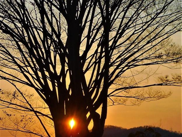 平木山の夕陽