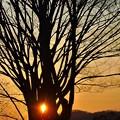 写真: 平木山の夕陽
