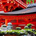 Photos: 本殿前の年代苔