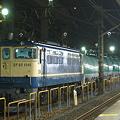 写真: pf1041-20081106b
