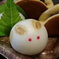 Photos: うさぎ美味し菓子の山