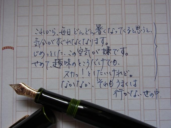 中屋万年筆 ネオスタンダード 緑溜 中軟 書き物 #4