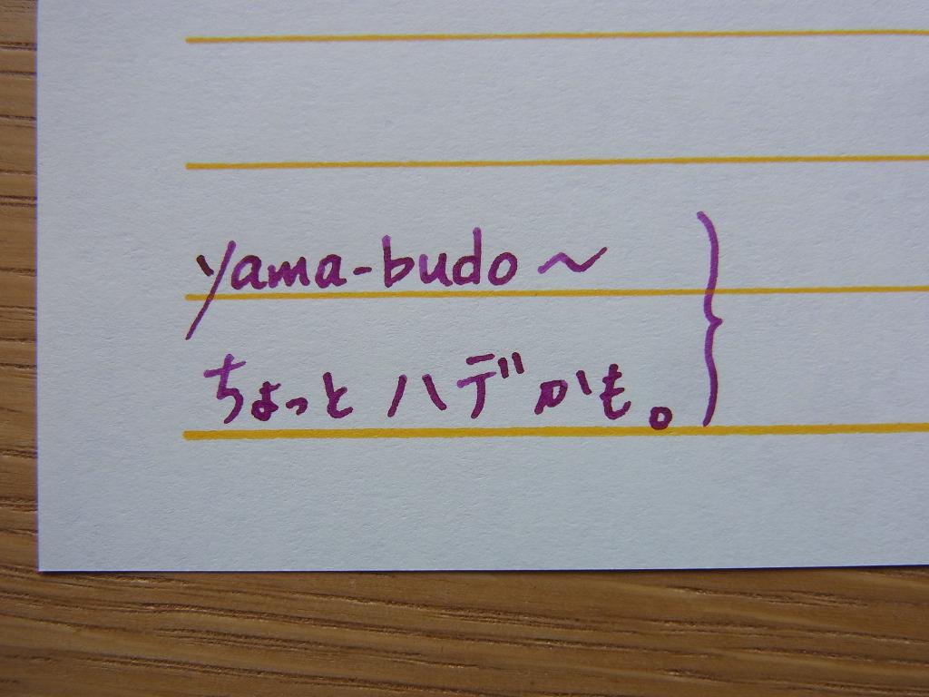 Pilot iroshizuku yama-budo handwriting 1
