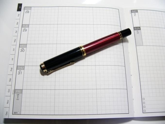 Liscio-1 2010 Diary (Page)