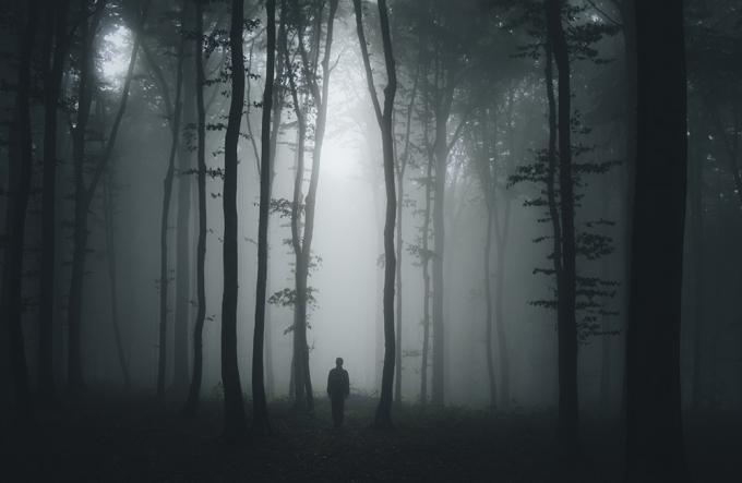 deep deep forest