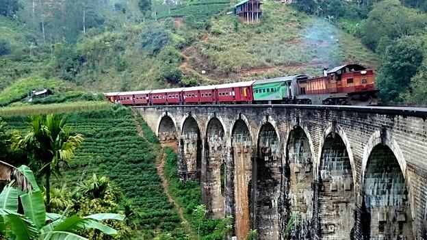 スリランカ鉄道、9 Arch Bridge と言う名所だそうです