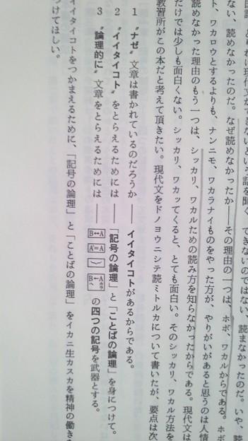 書き込み程度等御確認用内容見本現代文入門 記号でつかむイイタイコト 藤田修一