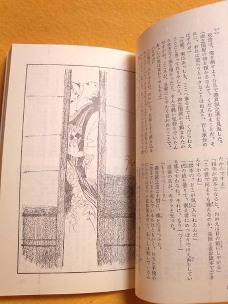 内容見本1 地獄の辰 無残捕物控 笹沢左保 小説