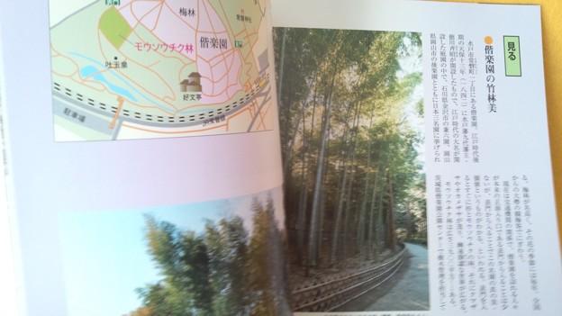 みほん4 常陽藝文 2016年12月号 いばらき 竹百科 植物 雑誌