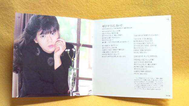 南野陽子 ヴァージナル VERGINAL みなみの ようこ 歌詞カード 写真部分
