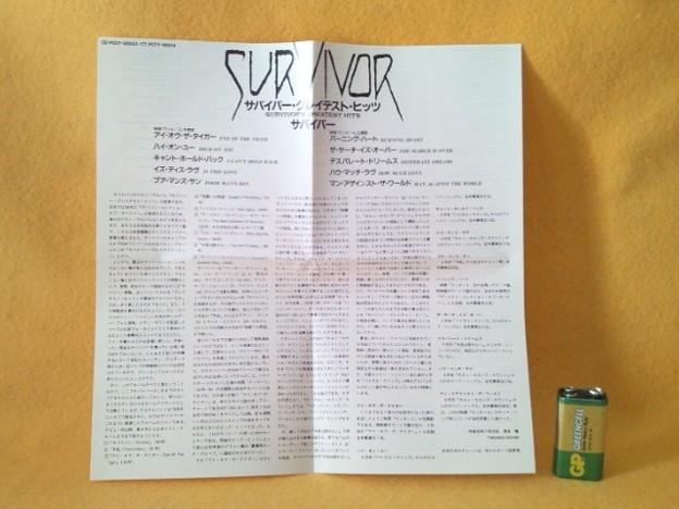 サバイバー・グレイテスト・ヒッツ CD EYE OF THE TIGER