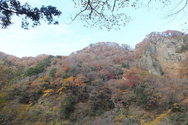 紅葉_袋田の滝 F8700