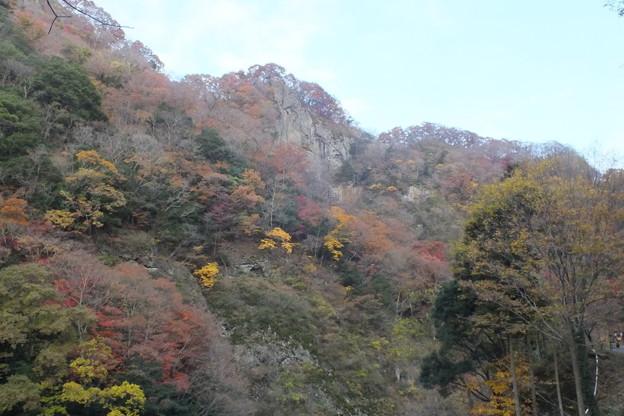 紅葉_袋田の滝 F8708