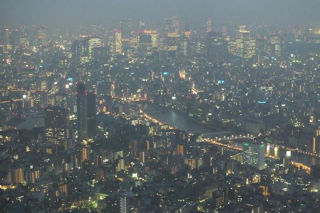スカイツリーより_夜景 F9518